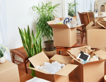 Boxes Partially Packed for Move