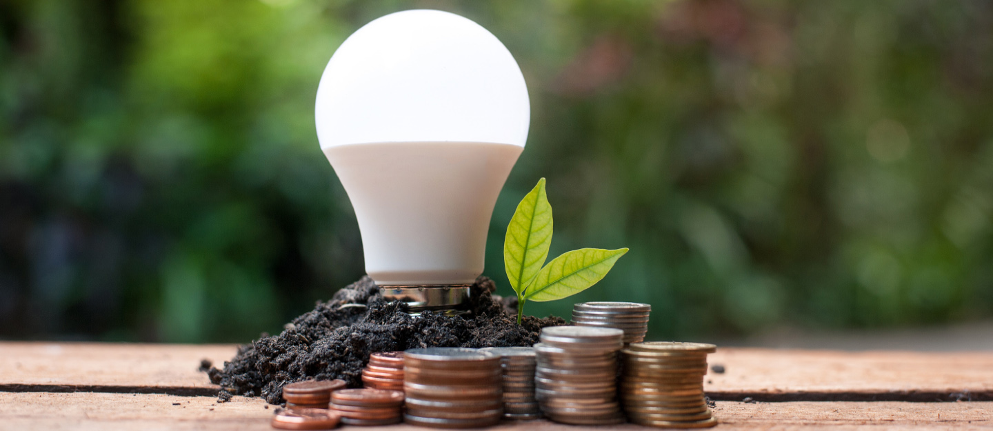 a light bulb with green leaves