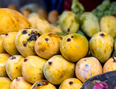 Types of Mangoes in Pakistan