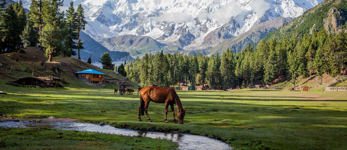 Pakistan is among the top 10 coolest places to go in 2019
