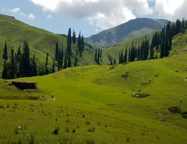 Siri Paye meadows is a must visit destination