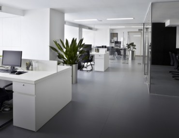 Popular Office Layout Ideas