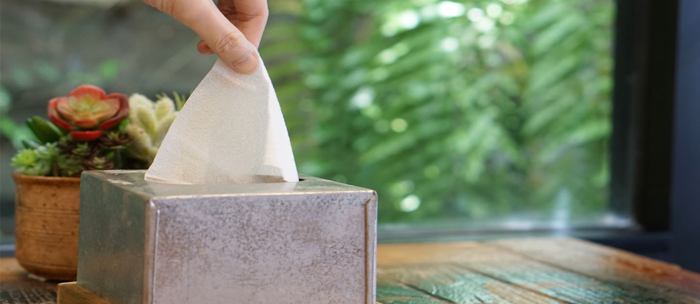 ways to prevent indoor air pollution