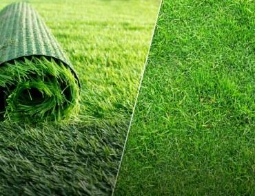 Choosing between Artificial Vs. Natural Grass