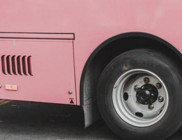 Sakura pink bus project in Khyber Pakhtunkhwa