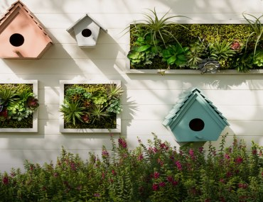 Best Garden Features for your home