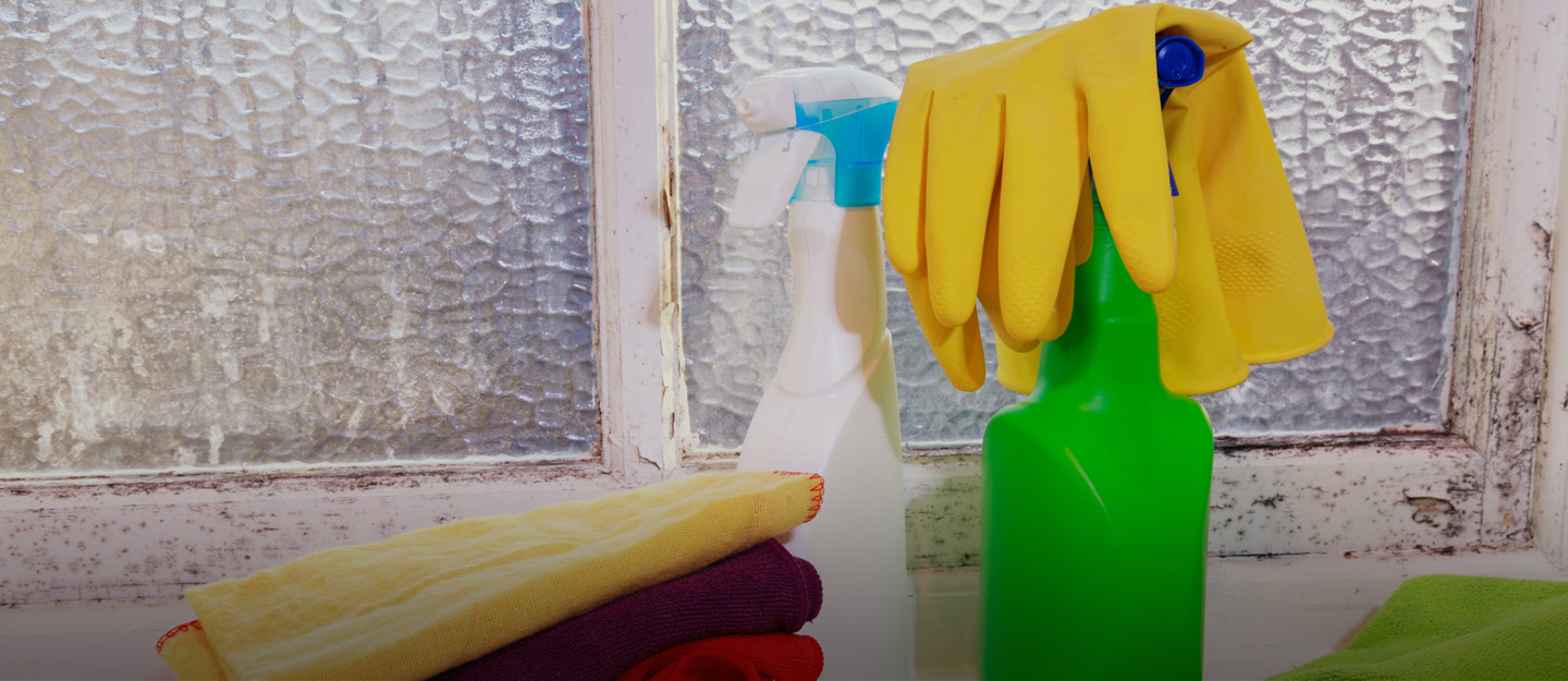 how to get rid of mould in your bathroom