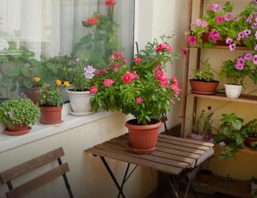 Décor Ideas for a Small Balcony