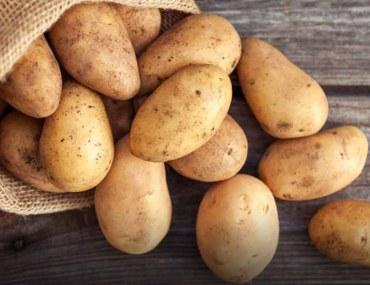 grow potatoes at home