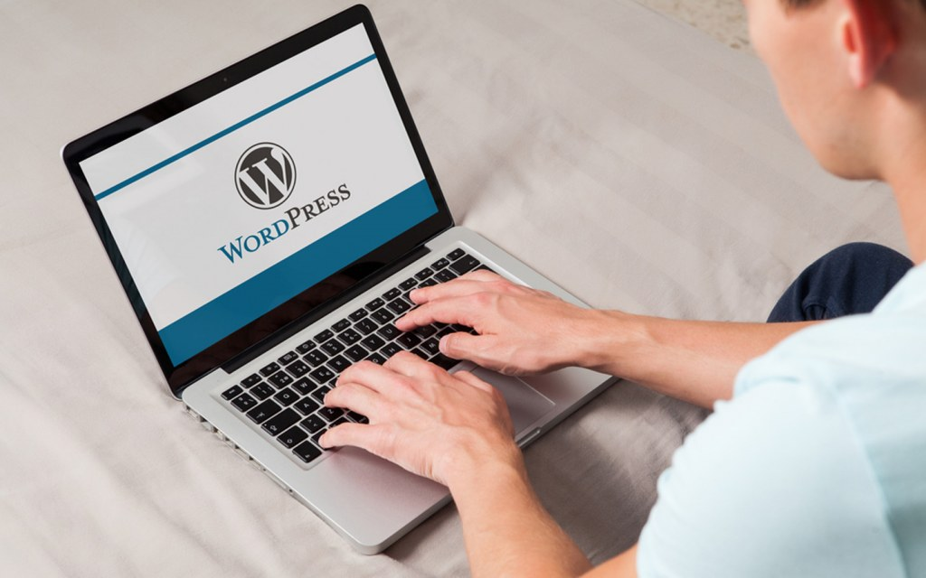 wordpress course is also offered at digiskills
