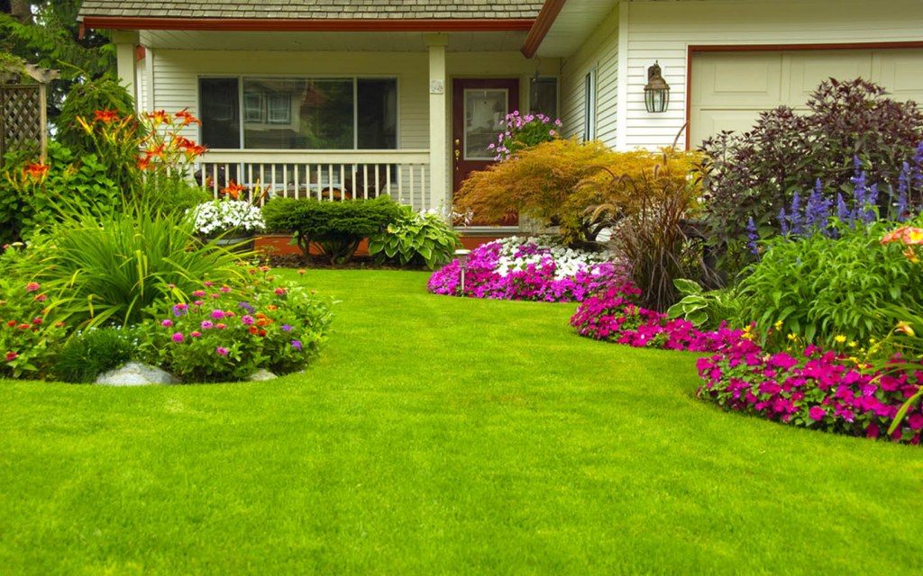 Beautiful Front Lawn