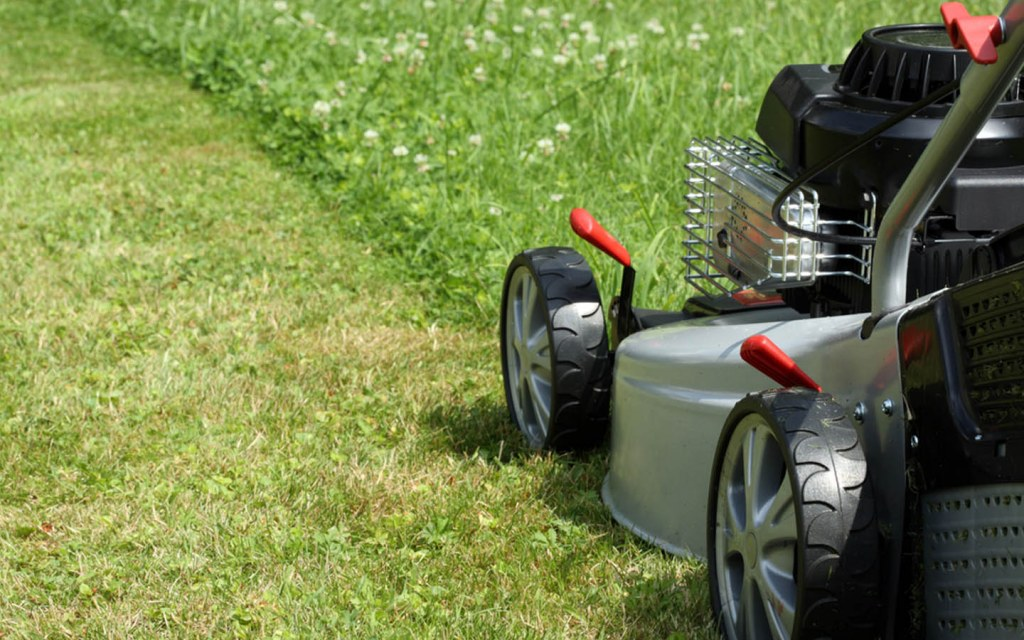 Lawnmower for your grass