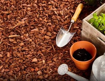 How to mulch your garden