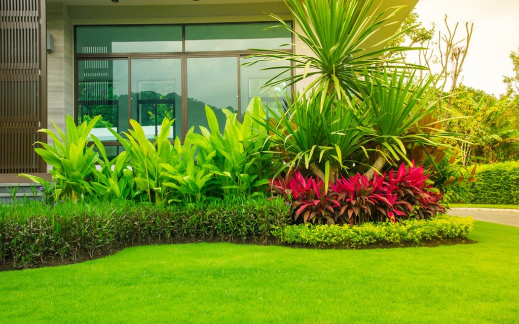 It is essential to take care of your new home's lawn