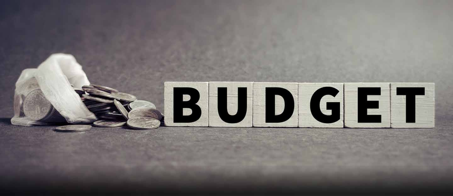 All You Need to About Federal Budget 2020-21