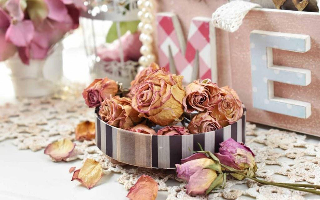 dry the rose petals