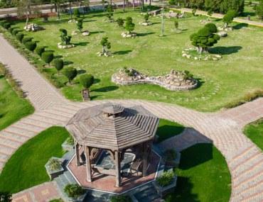 PHA Lahore
