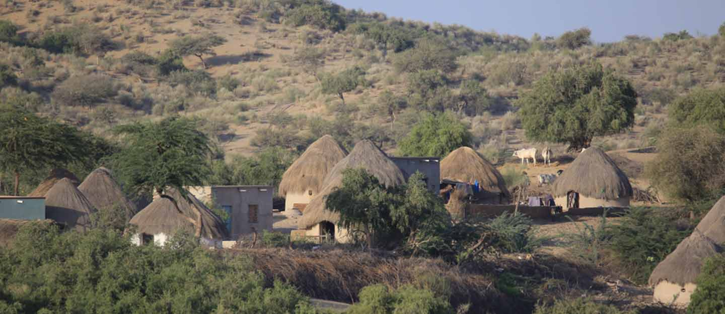 Planning a Trip to the Tharparkar District in Sindh   Zameen Blog