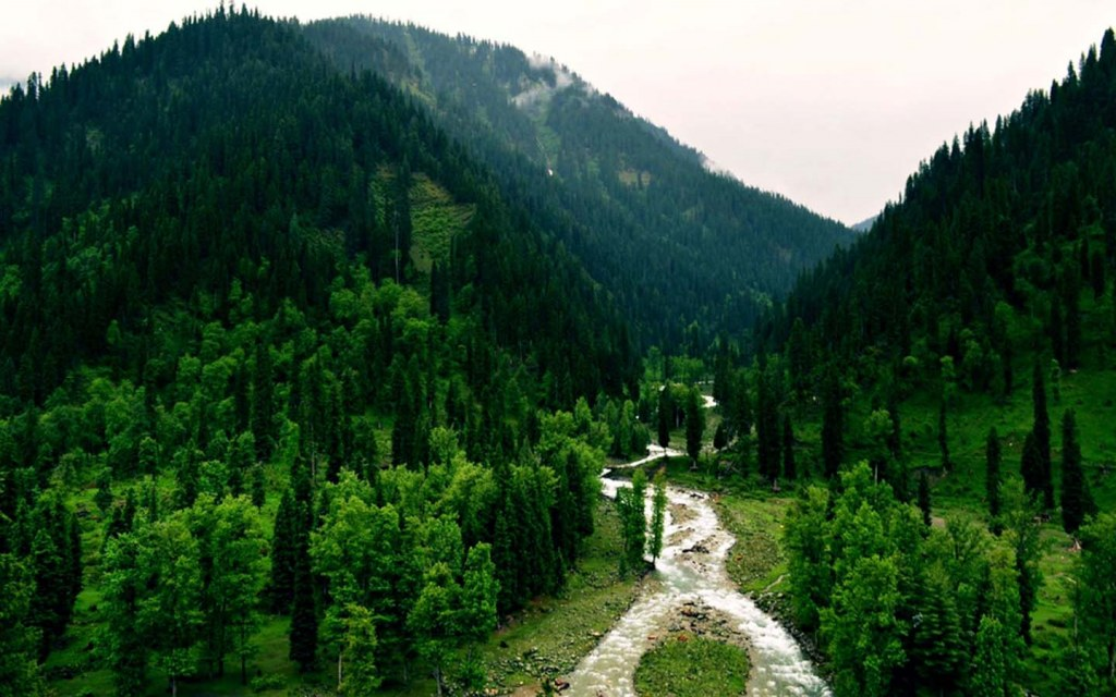 Nathia Gali is a top tourist attraction in Pakistan