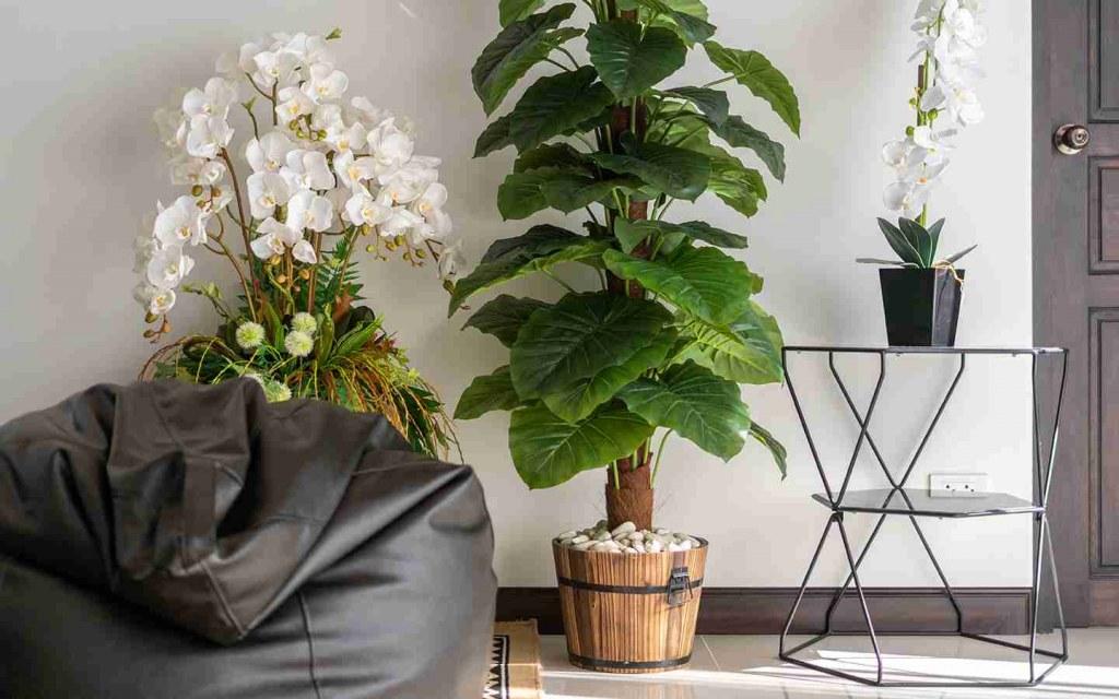 tall artificial plants
