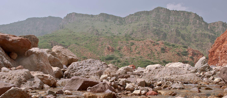 Chinji National Park inaugurated