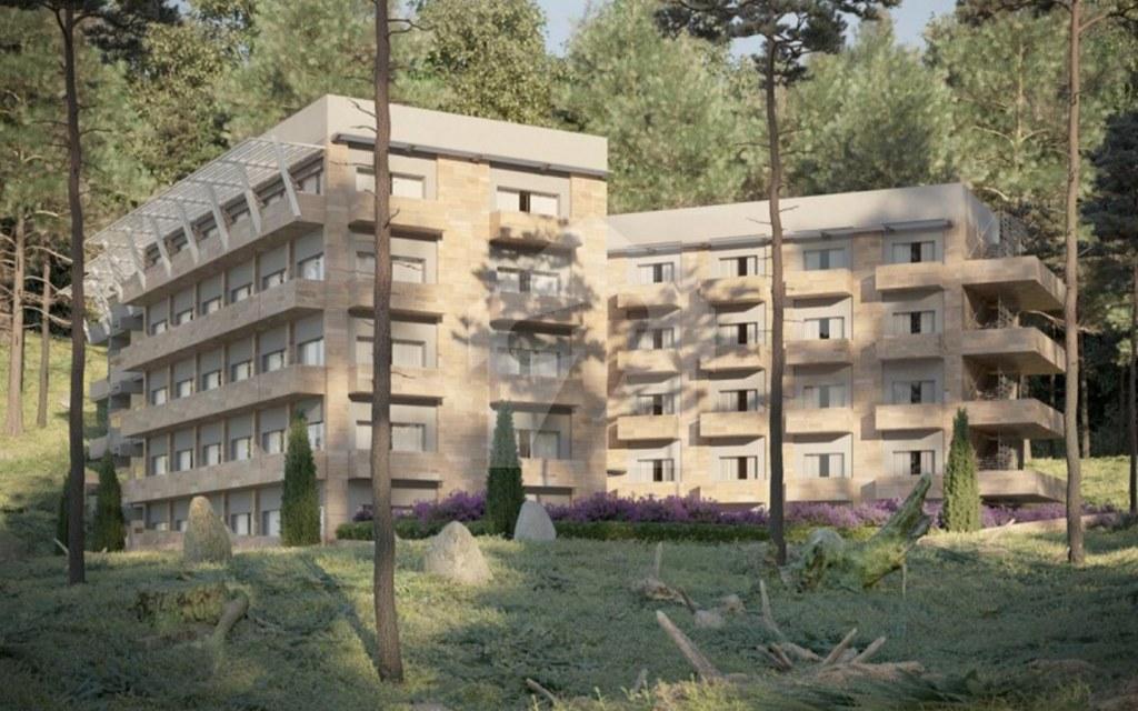 pine woods resort offers comfort