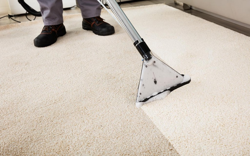 deep clean your carpet