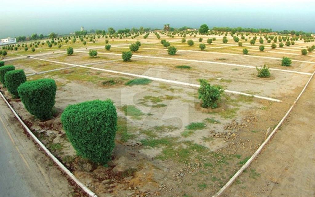 Technical Associates Pakistan Pvt Ltd have built Etihad Garden