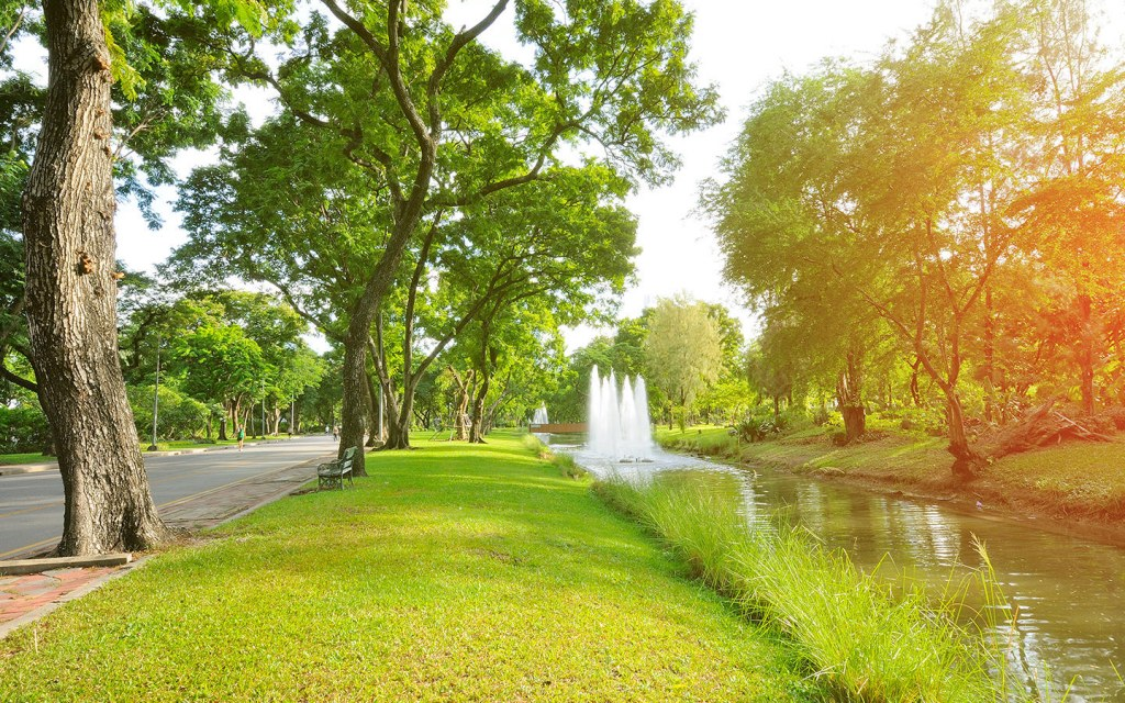 cities should have more green spaces