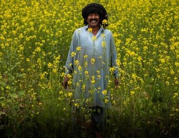 Pakistani farmers get Kisan Cards