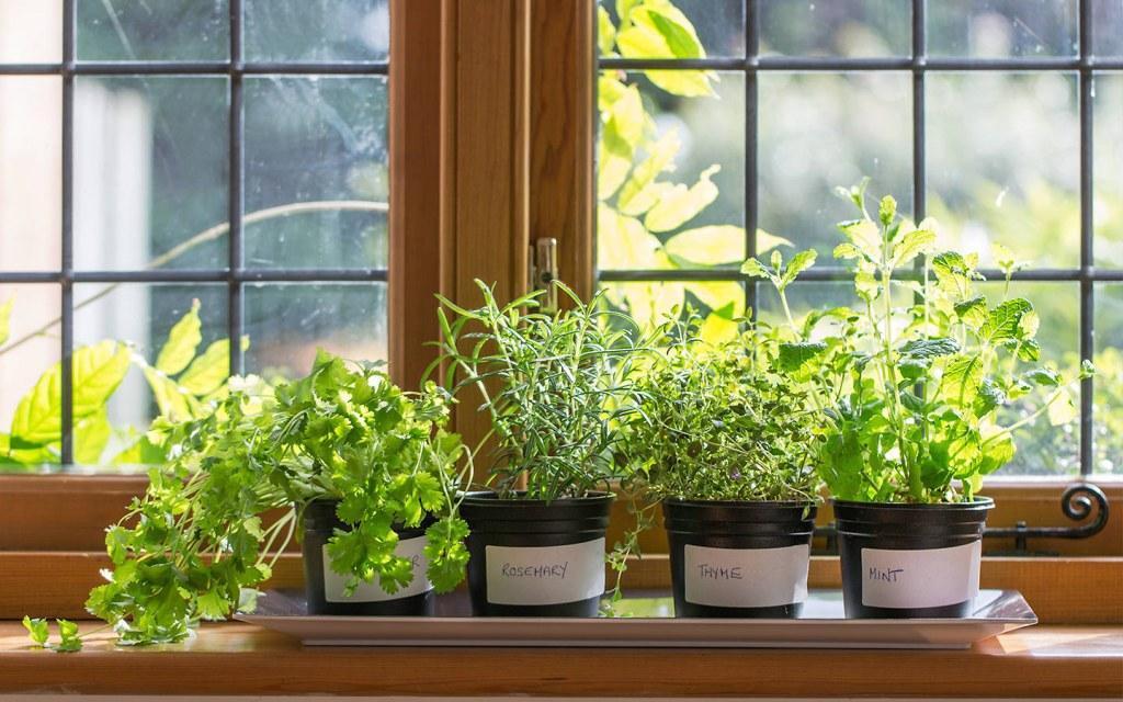 kitchen window sill décor ideas