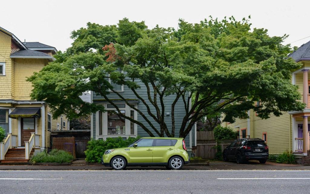 Use Trees To Provide a Shade for Your Car Park