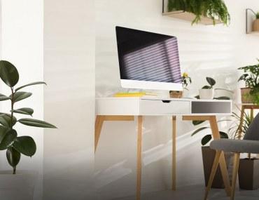 Best plants for workstations