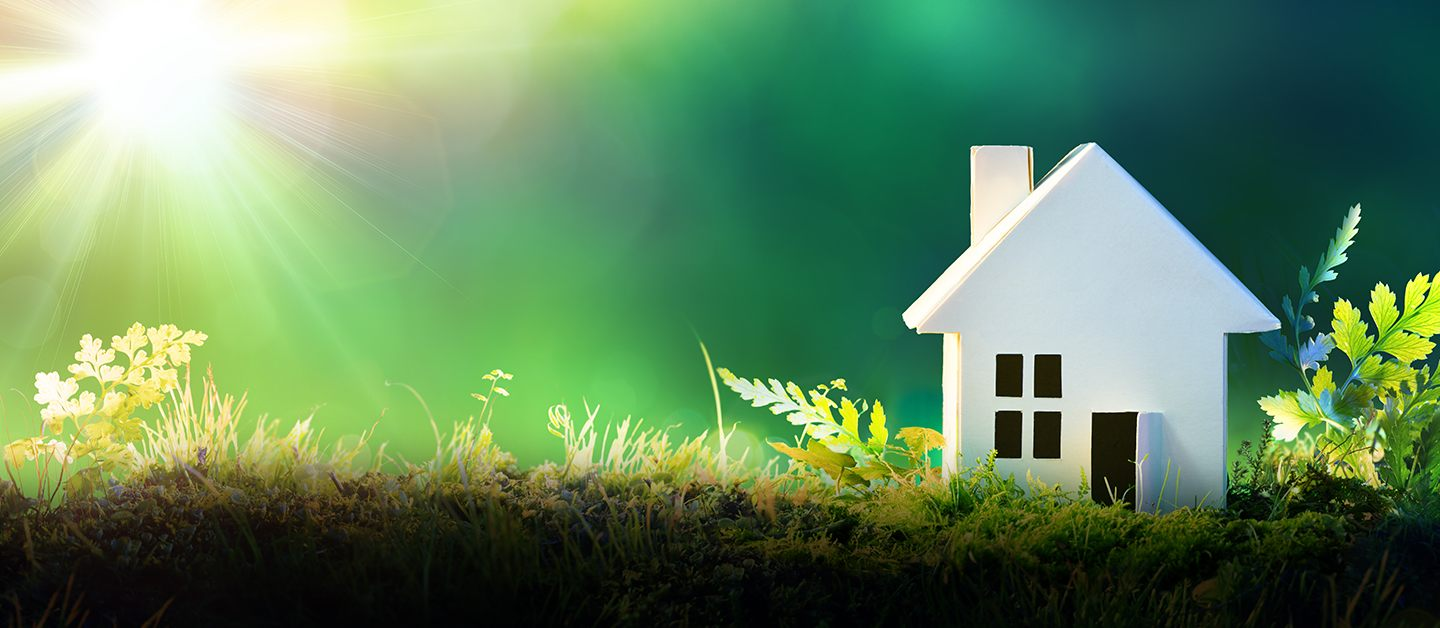 eco friendly features for your homes