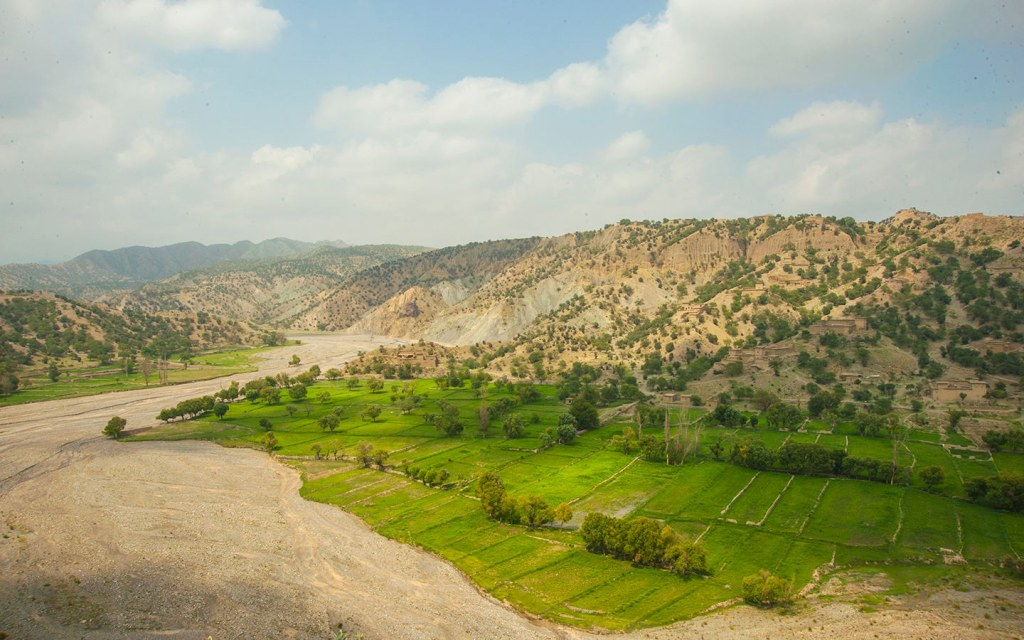 CPEC to give newer opportunities to Pakistan's agricultural sector