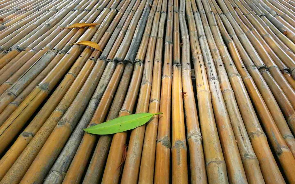 bamboo used in construction industry